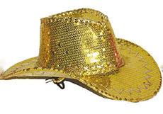 Cowboyhoed goud met pailletten