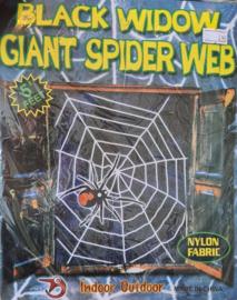 Spinnenweb decoratie