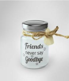 Little Starlight - Friends never say goodbye