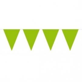 Mini vlaggenlijn groen