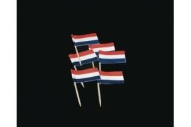 Vlagprikkers Nederland