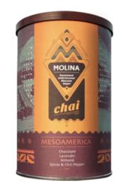 Molina Chai thee MesoAmerica