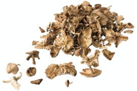 Mouseron gedroogd 100 gram