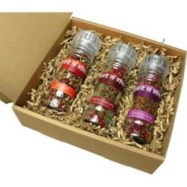 Spirit of Spice Geschenkset 3 x Glazen kruidenmixen