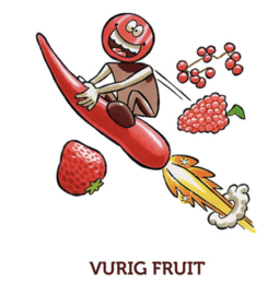 ChocoladeBikkel Vurig Fruit