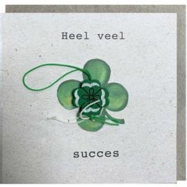 Kaart + Enveloppe: Heel Veel Succes