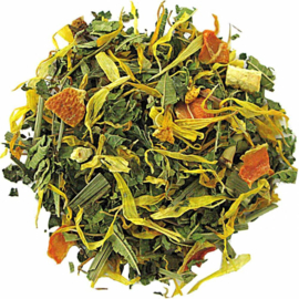 Natural Leaf Tea Fresh & Fitt