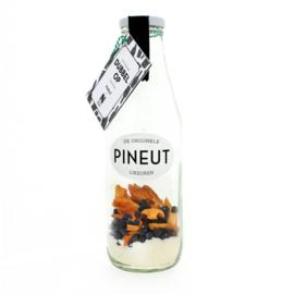 Pineut Dubbel op FLES (Pineut + flesje bier)