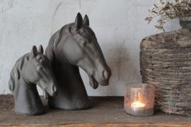 Paardenhoofd M