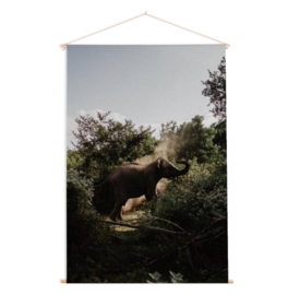 Poster 'Safari olifant'