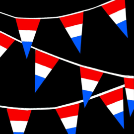Vlaggenlijnen 10m - nederlandse vlag