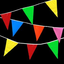 Vlaggenlijnen 10m - multicolor