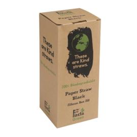 Fiesta Green composteerbare papieren rietjes zwart
