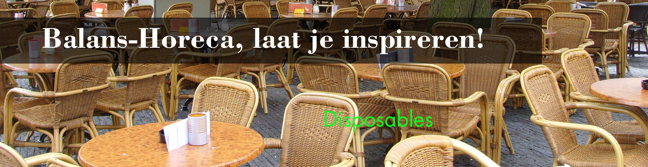 Dispsoables voor de horeca