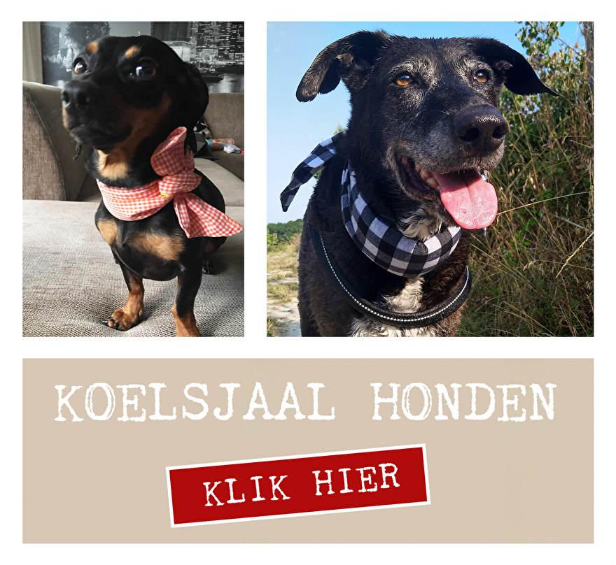 Koelsjaal hond. Onze koelsjaaltjes zijn voor toffe honden met stijl. Handgemaakt, ecologisch afbreekbare koelkristallen, non toxic, duurzaam en enig!