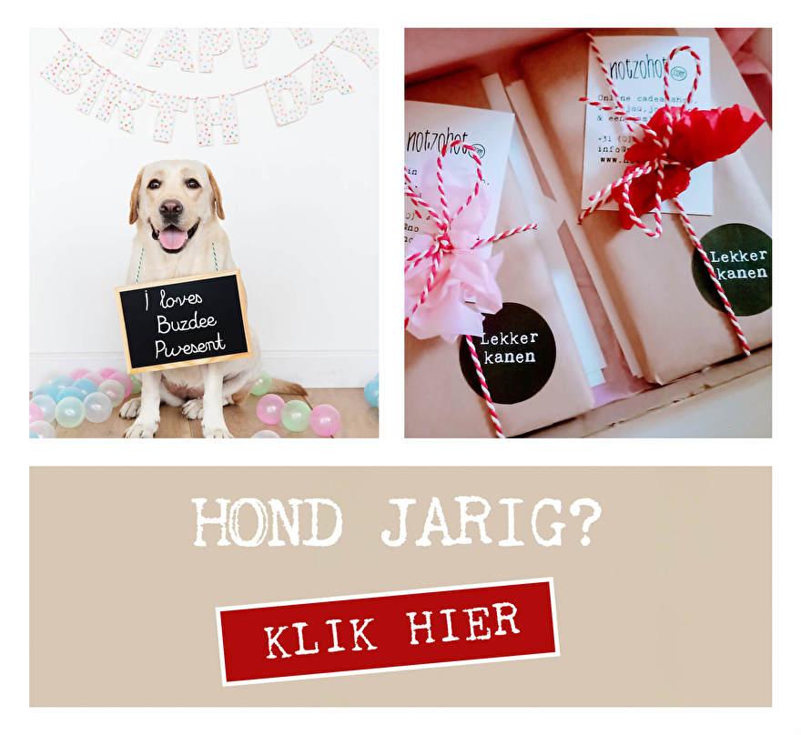 Hond jarig  gefeliciteerd hond, verjaardag hond cadeau hond felicitaties