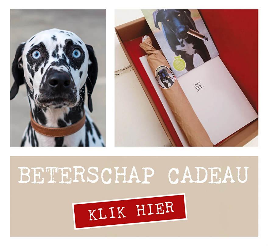 Beterschap hond honden cadeau brievenbus cadeau hond