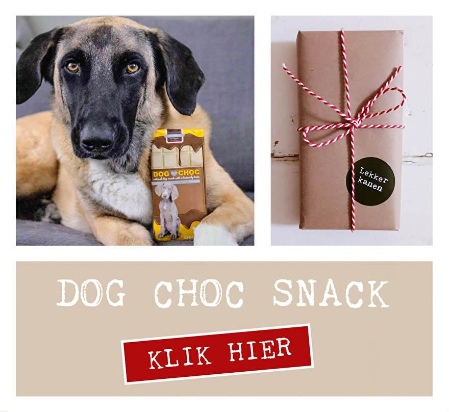 Honden mogen geen chocolade! Gelukkig is er speciale Honden Chocolade. Natuurlijke honden snack ontwikkeld voor honden. Dog Choc is in 4 smaken verkrijgbaar.
