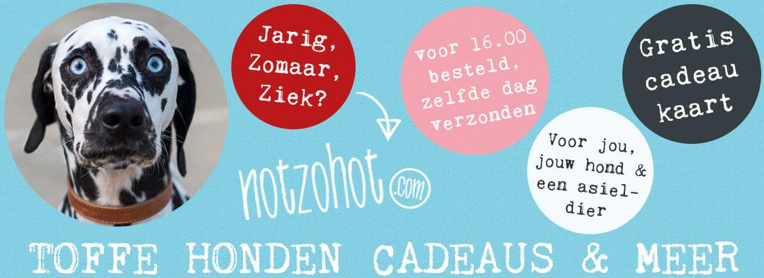 notzohot