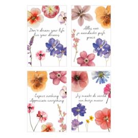 Zakje met een glimlach (10 mini kaartjes, incl schildersezeltje) kleur