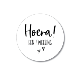 5 stickers: Hoera een tweeling