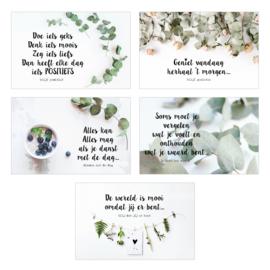 Zakje met een glimlach (10 mini kaartjes, incl schildersezeltje) groen