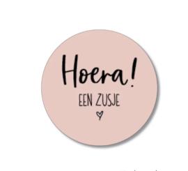 5 stickers: hoera een zusje