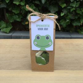 Zakje met kikker snoep en kaartje: opkikkertje voor jou