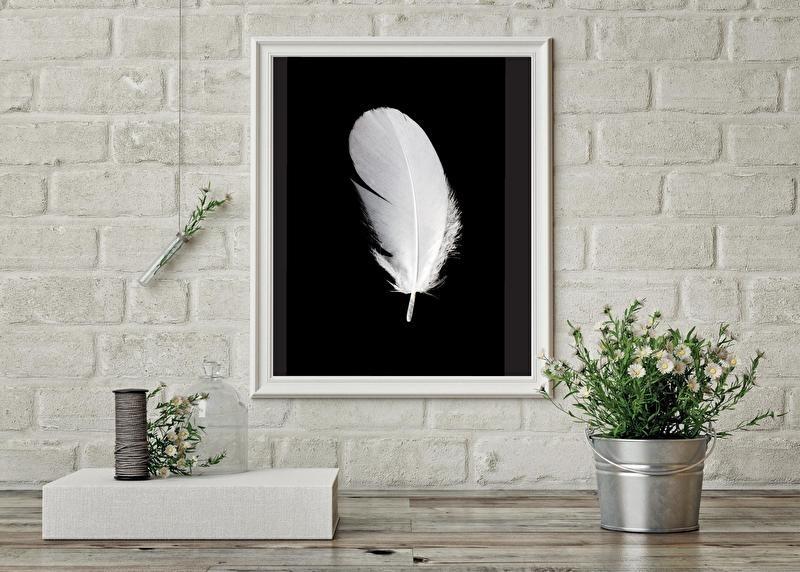 Woonkaart/poster A5, zwart met veer
