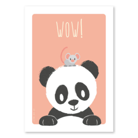 A6 Panda and mouse 'wow'
