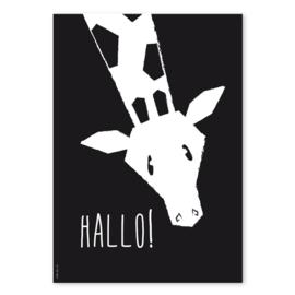 A4 Giraffe 'hallo!'