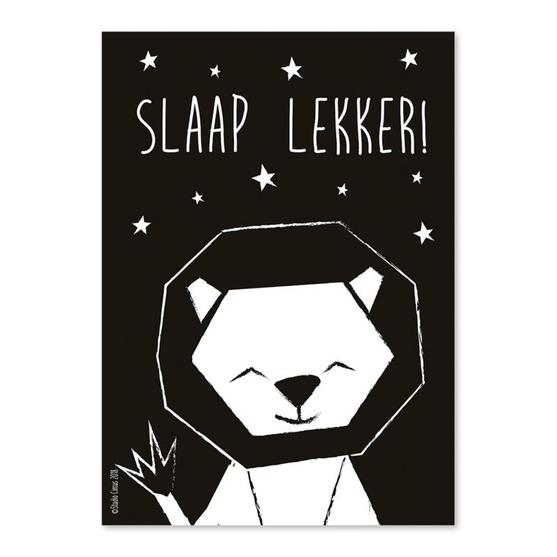 A6 Leeuw Slaap lekker!