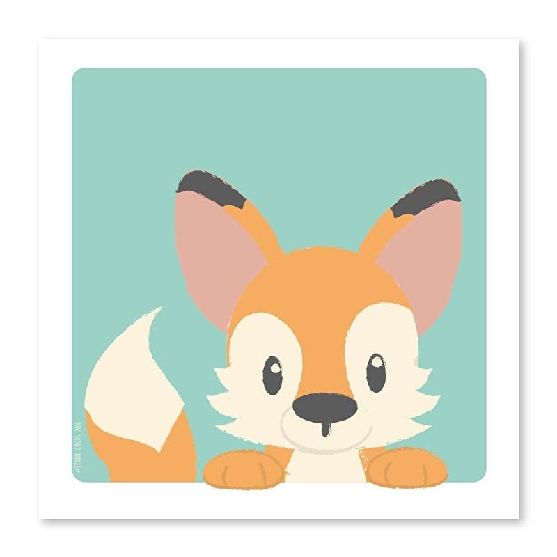 21X21 Fox