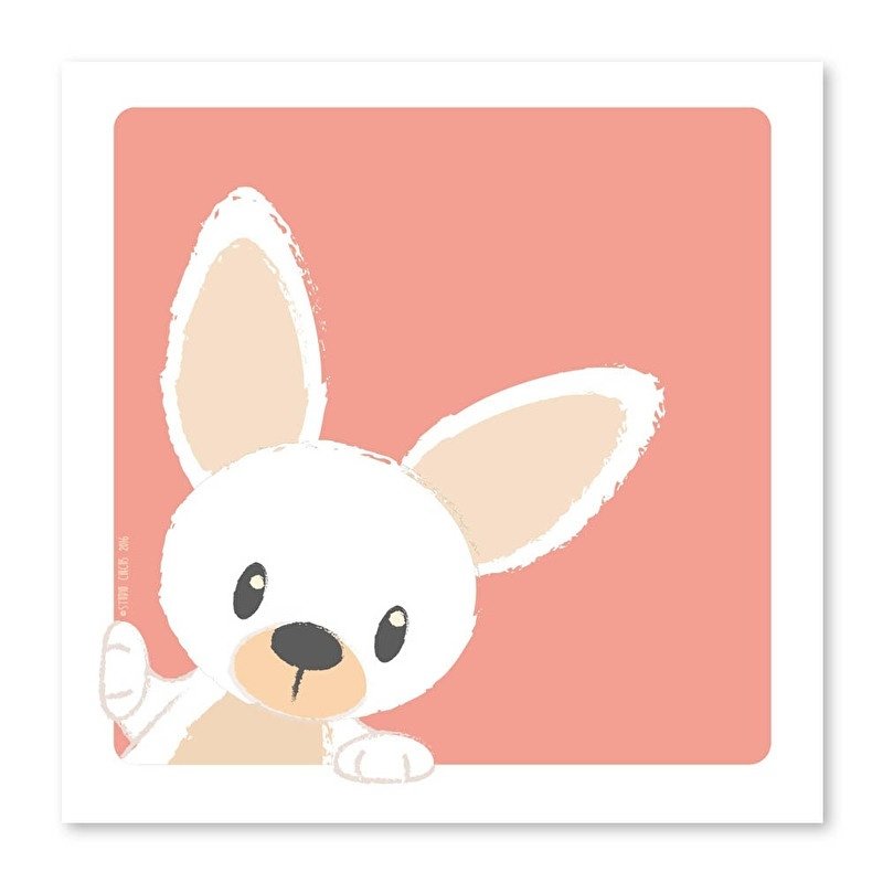 21X21 Rabbit