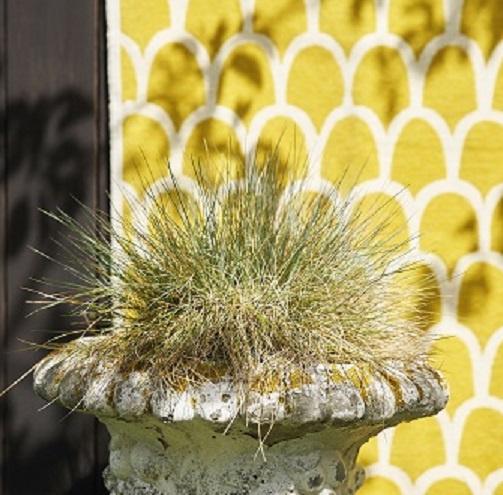Klippan plaid katoen Feathers geel