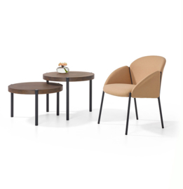 Artifort Andrea Lounge chair