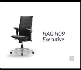 HAG H09