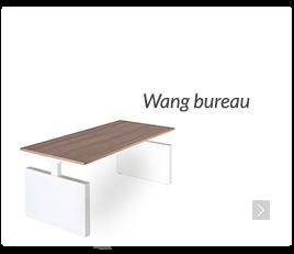 Wang bureau, zit-sta werken