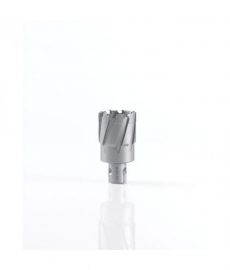 TRCS.190 TCT Railboor D=19 x 35 mm