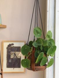 Plantenhanger - House of Oelie