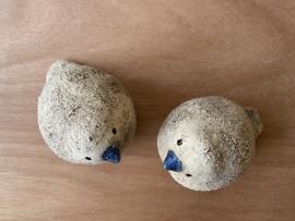 Jonge Vogel - Jikke van der Waal