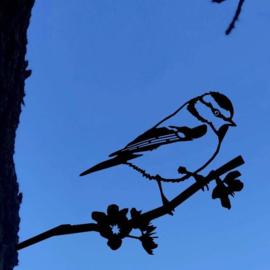 Pimpelmees - Metal bird