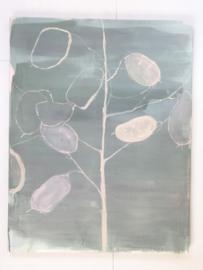 Lunaria on green - Maartje van den Noort