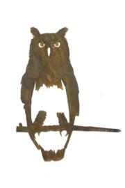 Uil- Metal bird