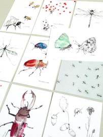 Tien kriebelende insecten - Maartje van den Noort