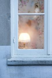 Secret window - Eline Vergunst
