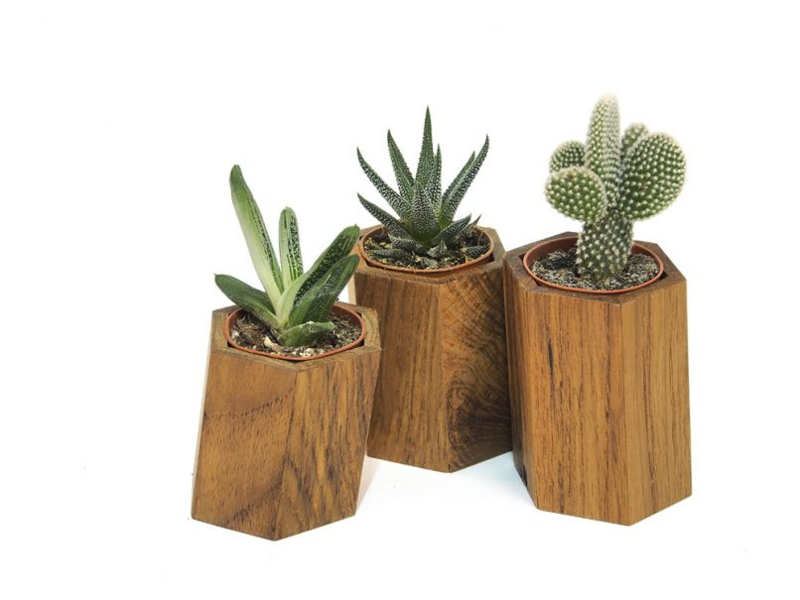 Plantenpotje - MEUKK