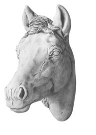 Paardenhoofd klein, beton BxH 15x40cm
