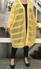 ITALY zacht gebreide katoen vest ( extra groot)