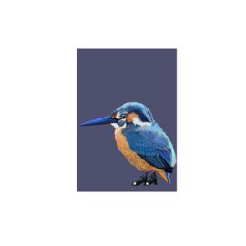 postkaart ijsvogel